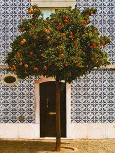 Castro Marim, Algavre, Portugal
