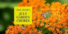 The Gardener's July