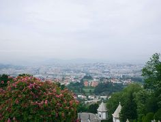 """Morning walk and views over Braga from the Bom Jesus do Monte Sanctuary  #whataview #braga #portugal #bomjesusdomonte #walking #travel #instatravel #instatraveling #travelgram #traveladdict #instadaily #photooftheday #travelphotography #instablogger #travelblogger #wanderlust #justgo #instagood"" by @dominique_does (). #turismo #instalife #ilove #madeinitaly #italytravel #tour #passportready #instavacation #natgeotravel #mytinyatlas #traveldeeper #travelawesome #travelstoke #travelwriter…"