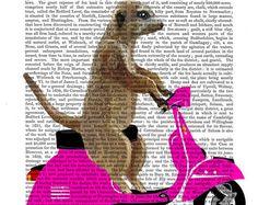 Meerkat on Pink Moped Art Print Nursery print Nursery Art Meerkat Print Meerkat Art Meerkat Illustration kids room