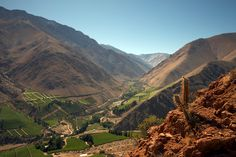 images of chilean wine | The hottest region in Chile, Elqui Valley, receives less water than ...