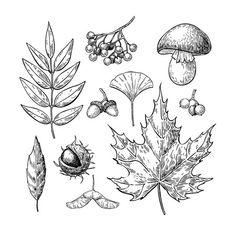 Fall Drawings, Dark Art Drawings, Autumn Illustration, Graphic Illustration, Tatoo Flowers, Woodcut Tattoo, Autumn Tattoo, Black And White Drawing, Nature Tattoos