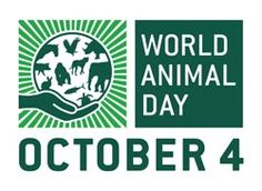 It's World Animal Day in a couple of days, so read all about the day on our blog pages.