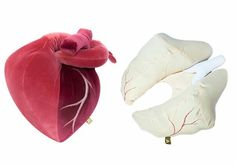Heart and Lungs shaped pillows