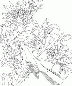 difficult coloring pages for adults florida state flower coloring page flower coloring page