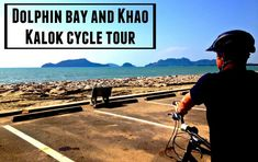 Looking to explore Hua Hin on wheels? From Dolphin Bay Beach all the way through to Kao Kalok Hua Hin Bike tours is a fun day out for the whole family. Travel With Kids, Family Travel, Stuff To Do, Things To Do, Koh Samui Thailand, Cycle Ride, Fun Days Out, Natural Playground, Explore Travel