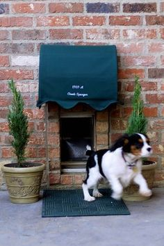Dog door -looks like a little hotel entry - so cute!