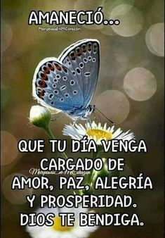 Cute Good Morning Quotes, Good Morning Inspiration, Good Day Quotes, Good Morning Messages, Good Morning In Spanish, Blessing Words, Mom Prayers, Weekday Quotes, Positive Phrases
