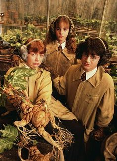 Harry Potter, Ron Weasley and Hermione Granger. Herbology at Hogwarts. Harry Potter World, Mundo Harry Potter, Harry Potter Films, Harry Potter Love, Harry Potter Universal, Harry Potter Plants, Harry Potter Mandrake, Harry Potter Props, Harry Potter Pictures