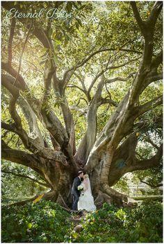 Perth Wedding Photographer- Matt and Nicole�s Wedding- Hyde Park Wedding / Crystal Swan Cruises Wedding