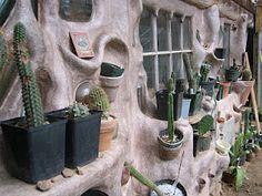 Cob cactus cultivation wall, Mountain Gardens.