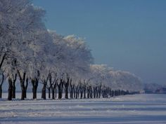 This snow covered landscape, photographed by Sisse Brimberg, is near Odense, a city in Denmark. Odense is also the birthplace of Hans Christian Andersen...