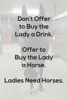 At least give ME a horse😊 or two horses😇🐴 Funny Horse Memes, Funny Horses, Horse Humor, Funny Pix, Equestrian Quotes, Equestrian Problems, Horse Love, Horse Girl, Inspirational Horse Quotes
