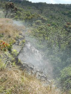 Visit Hawaii Volcanoes National Park and see the steam caves