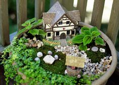 What a lovely little Fairy Garden