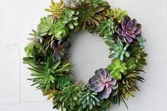Grow a whole new tradition this year with a gorgeous succulent wreath. Learn how to make one using a sphagnum moss living wreath form, succulents, floral pins, and wire. Succulent Centerpieces, Succulent Bouquet, Succulent Terrarium, Succulent Favors, Succulent Ideas, Terrarium Ideas, Succulent Care, Planter Ideas, Terrariums