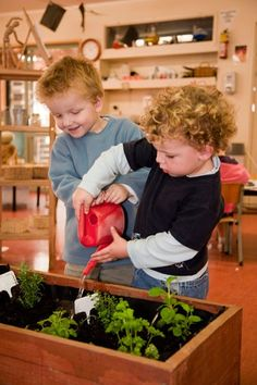 garden box in the classroom love this idea start seeds inside then I can move it outside in the summer