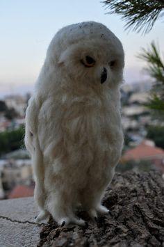 Nadel gefilzte Vogel.  Weißen Filz Eule. Nadel von darialvovsky