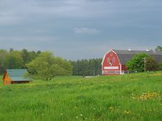 Image detail for -Panoramio - Photo of Smiling Hill Farm South