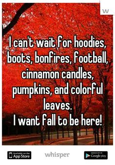 I can't wait for hoodies, boots, bonfires, football, cinnamon candles, pumpkins, and colorful leaves.   I want fall to be here!