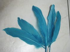 bright turqoise loose goose nagoire feathers. Use it to make lovely bridal hairpieces, hair dos and whatever crafty thing you can think of!