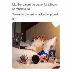 It's easy to laugh about being a Millennial with these super-relatable funny memes and quotes about what it's like to be part of Generation Y. If you were born between 1981 and see if you can relate to these funny millennial memes. Crazy Funny Memes, Really Funny Memes, Stupid Funny Memes, Funny Tweets, Funny Laugh, Funny Relatable Memes, Funny Stuff, Funny Things, Funny Funny Funny