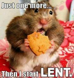 Lent www.detroitfaithjourney.blogspot.com