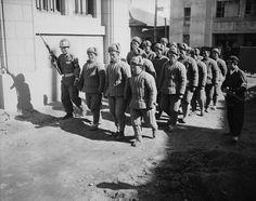 1950, communist china, the korean war, yalu river, the people's volunteer army, pva, 38th parallel, south korea, u.n. troops