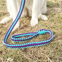 Paracord dog leash with turquoise and deep purple weaved together for a unique, stylish leash.
