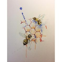 """869 Likes, 18 Comments - 彫顔一門(彫茜)Lucy Hu (@lucylululu) on Instagram: """" #bee #watercolor #watercolors #watercolour #watercolours #watercolorart #watercolorbee #honeycomb"""""""