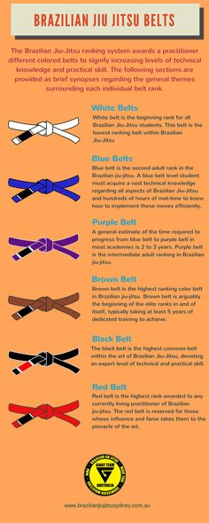 In Brazilian Jiu Jitsu, the belts are the indicator of a players expertise. Belts of different colours like white, blue, purple, brown, black, red are worn by different Brazilian Jiu Jitsu players. A brief introduction regarding the importance of various belts has been offered for the benefit of people who are new to martial arts.