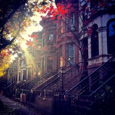 Autumn in Brooklyn, New York