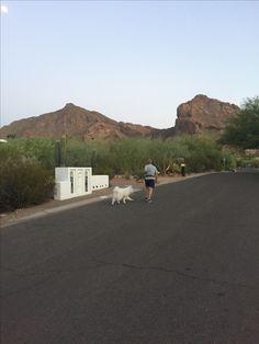 Paradise Valley Arizona, Country Roads