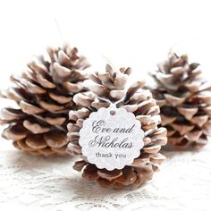 (Used in this project: Scallop Favor Tags and Small Rectangle Labels in Magnolia style.) Pinecone fire starters are a fun and useful craft I remember makin