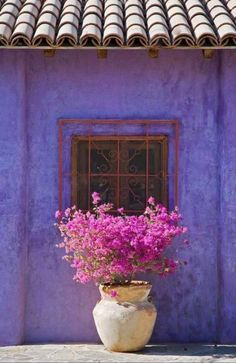 Beautiful Windows with Flowers Options nice The flower includes a floral head surrounded by various delicate petals. Flowers have an extremely brief life but undoubtedly an extremely significant. Old Windows, Windows And Doors, Beautiful Flowers, Beautiful Places, All Things Purple, Window Boxes, Container Gardening, Color Inspiration, Exterior