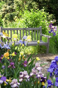 relaxing flower and plant design ideas to relaxe your garden Relaxing flower garden design 129 Beautiful Gardens, Beautiful Flowers, The Secret Garden, Iris Garden, Cacti Garden, Garden Oasis, Flowers Garden, Spring Flowers, Flower Garden Design