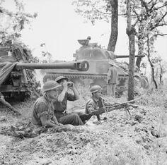 A_British_17-pdr_anti-tank_gun_and_Sherman_tank_near_Cassino,_Italy,_17_May_1944._NA15075.jpg (800×794)