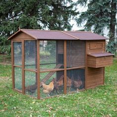 Boomer & George Large Poultry Palace Chicken Coop - XCD048-1