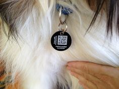 Quick Response (QR) codes add value to identify owners of a lost pet and are helpful in many other ways.
