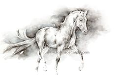 'Phantom' Original watercolour painting of a grey horse trotting. Minimal black and white style. By Robin Roadnight Equestrian Art.