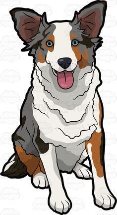A cute Australian Shepherd #cartoon #clipart #vector #vectortoons #stockimage #stockart #art