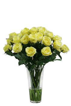 SilkSense Corporate Silk Flower Rentals is a growing brand that offers sales-oriented entrepreneurs an opportunity to buy a complete business package, backed by over 20 years of industry experience, in the beautiful field of corporate silk flower rentals. Corporate Flowers, Silk Floral Arrangements, Yellow Roses, Silk Flowers, Beautiful, Silk Flower Arrangements