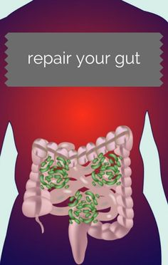If you're suffering from chronic stomach issues, Dr Oz explained what could be to blame and what you can do to find relief. http://www.recapo.com/dr-oz/dr-oz-advice/dr-oz-repair-gut-fix-chronic-stomach-issues/