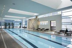 The Best Indoor/Outdoor Pools in Chicago: Loews Chicago Hotel