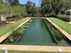 Having completed nearly 70 biologically filtered pools across australia, natural swimming pools australia was recently · austria–based natural pool Swimming Pool Chlorine, Natural Swimming Ponds, Swimming Pool Pond, Living Pool, Pool Landscaping, Backyard Pools, Pool Decks, Free Pool, Luxury Pools