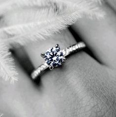 Our Process — Custom Wedding & Engagement Rings   Melbourne - Artelia Jewellery