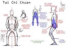 """chinesestyleforyou: """" Why body Alignment/Structure is important. """""""