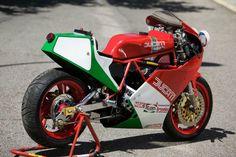 TT F1