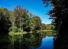 Lake at Fowler Park in Vigo County Indiana captured by Wandering Ways Photography 2016