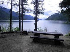 Where to find camping in the North Okanagan when the provincial campgrounds are full! Some gems here! The Province, Campsite, Tourism, Trail, Environment, Fishing, Gems, Outdoors, Park